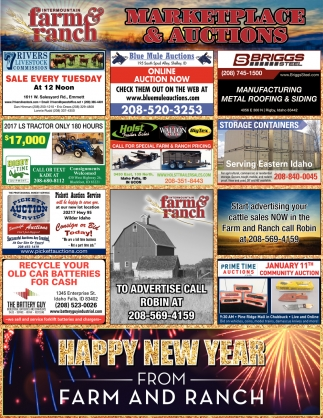 Bankruptcy, Estate, Auto, RV and Imports