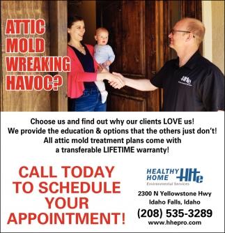 Attic Mold Wreaking HVAOC?