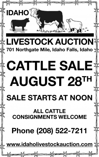 Cattle Sale August 28th