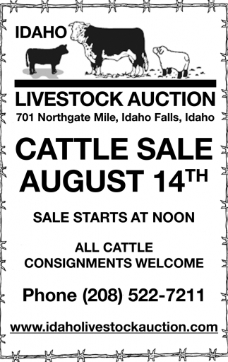 Cattle Sale August 7th