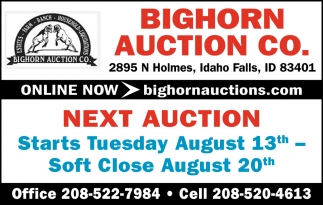 Next Auction
