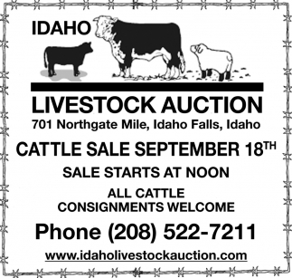 Cattle Sale September 18th