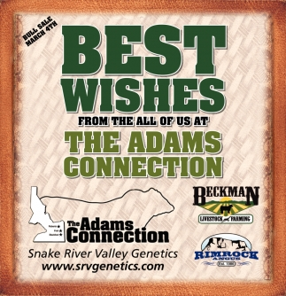 Best wishes from the all of us at The Adams Connection