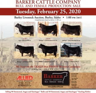 Bull and female production sale