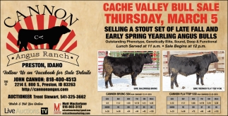 Cache Valley Bull Sale