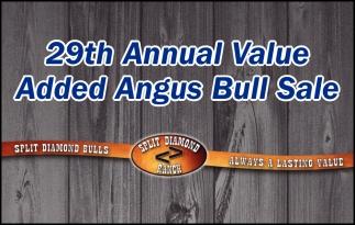 29th Annual Value Added Angus Bull Sale