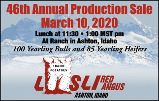 46th Annual Production Sale
