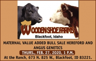 Maternal Value Added Bull Sale Hereford and Angus Genetics