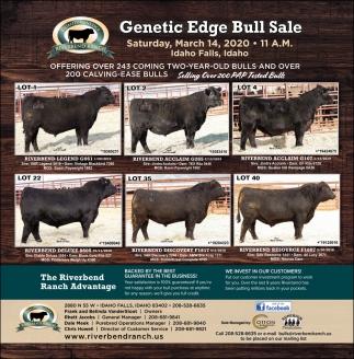 Genetic Edge Bull Sale